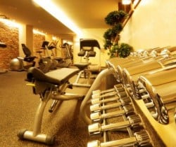 Chalet Apartment Perseus: Fitness room