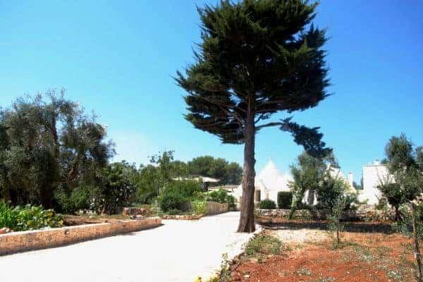 Villa Apulia: Entrance