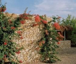 Villa Rayan: Entrance