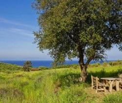 Villa Linda-Exterior views