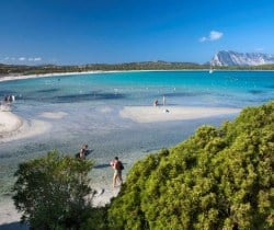 Villa Ulivo: Beach