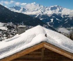 Chalet Azalea: View