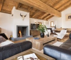 Chalet Mirach: Fireplace